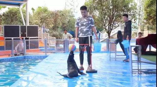 游在昭山:欢度夏日,城市海景水上乐园门票免费送-湘潭